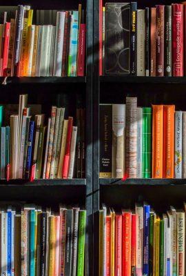 Etagère de livres