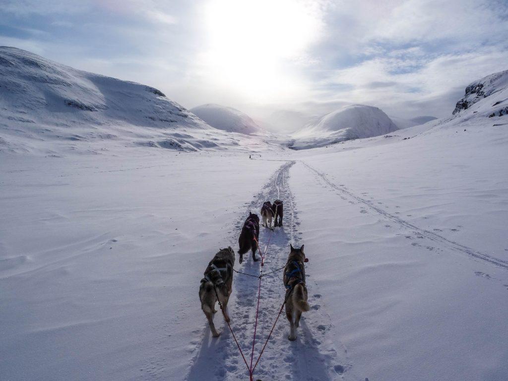Partir en Laponie à Noël